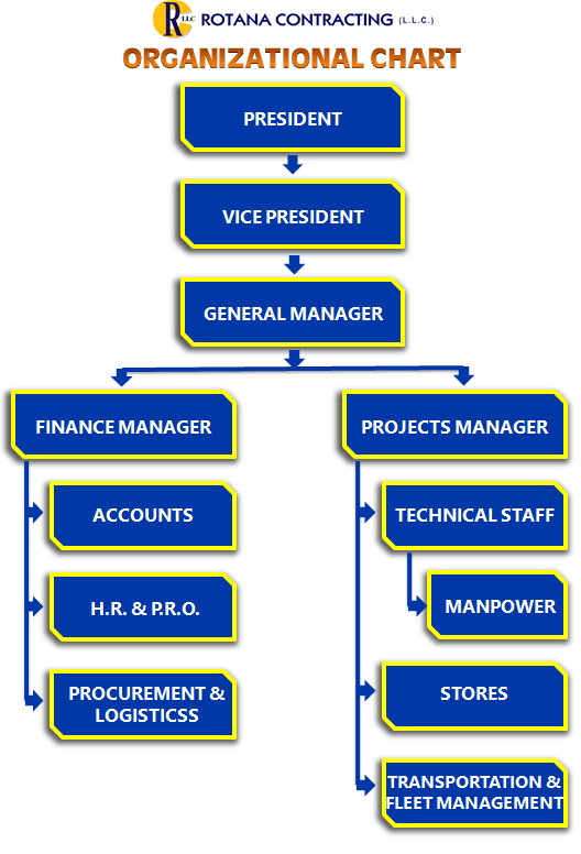 organisational structure of videocon company